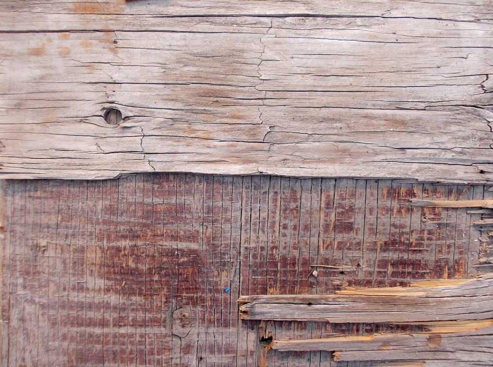 Wood Background Texture 62
