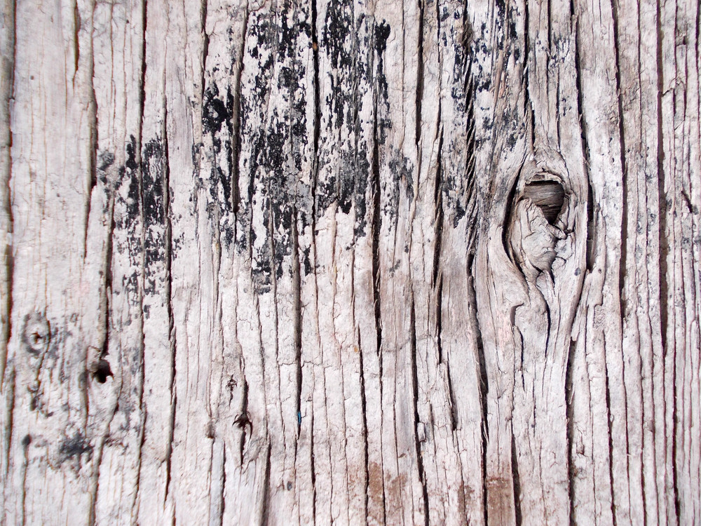 Wood Background Texture 65