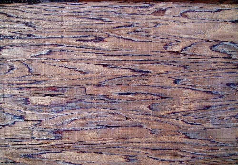 Wood Grain 78 Texture