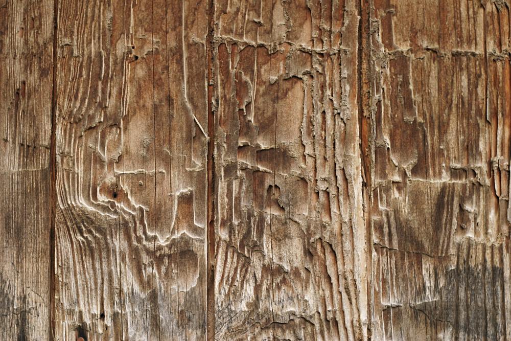 Wood Grain 94 Texture