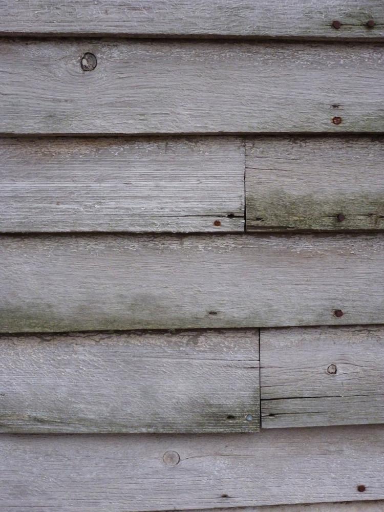 Wood Grain 97 Texture