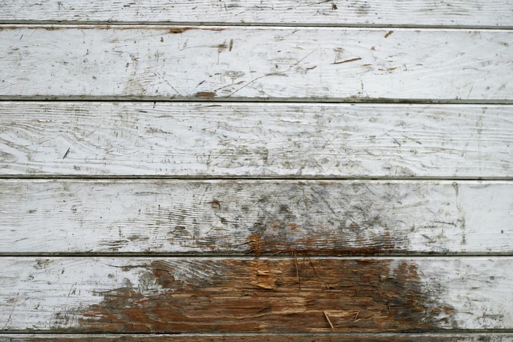 Wood Grunge 27 Texture