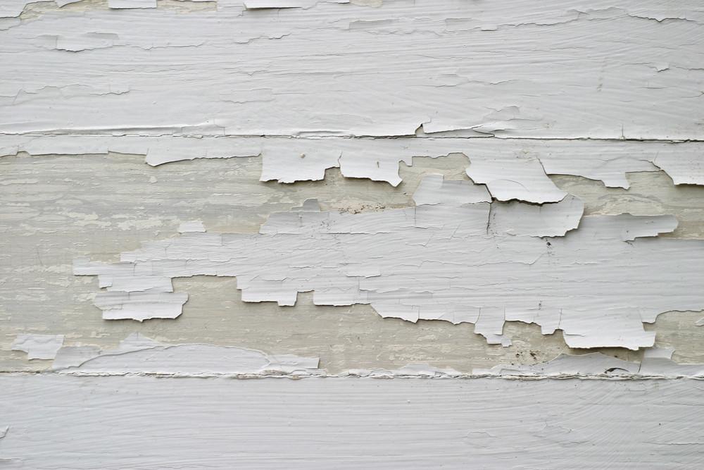 Wood Grunge 37 Texture