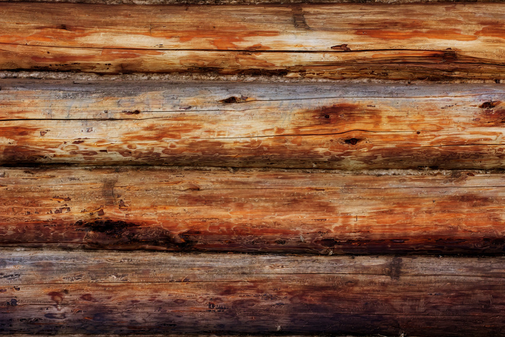 Wood Surface Texture 25