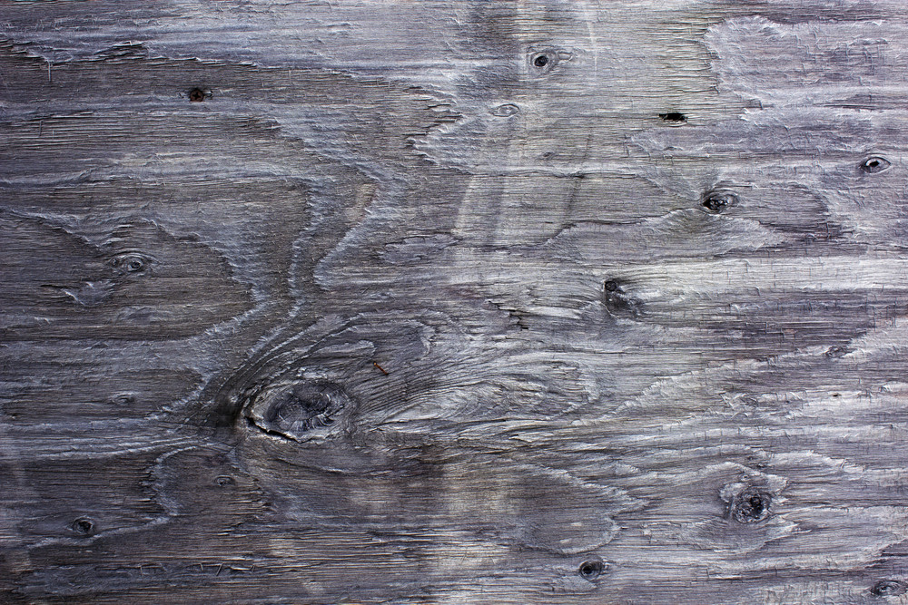 Wood Surface Texture 31