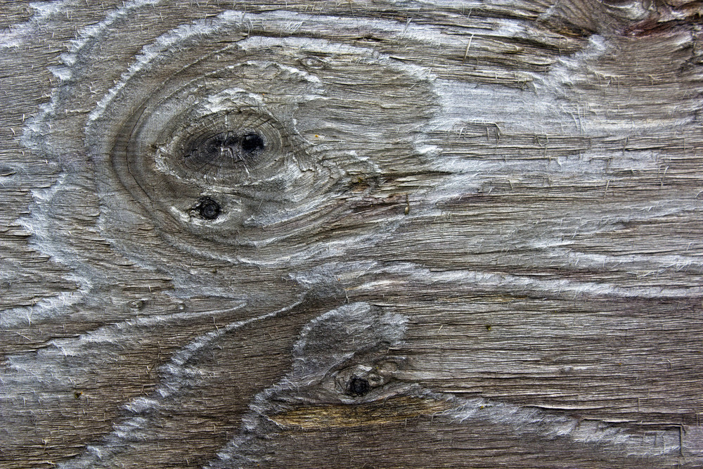 Wood Surface Texture 34