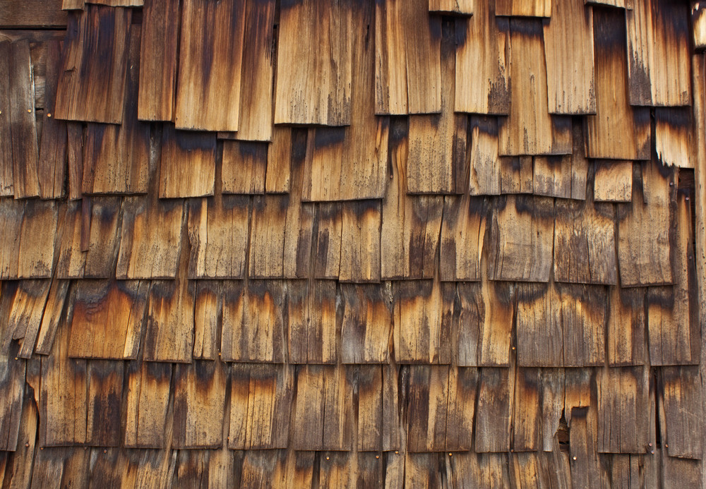 Wood Surface Texture 58
