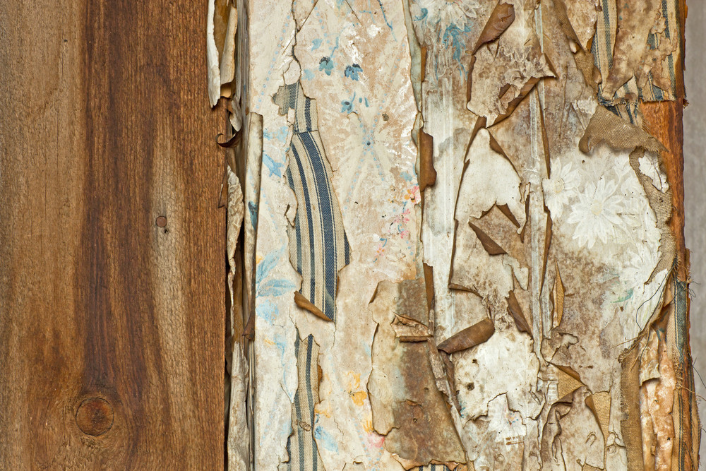 Wood Surface Texture 74