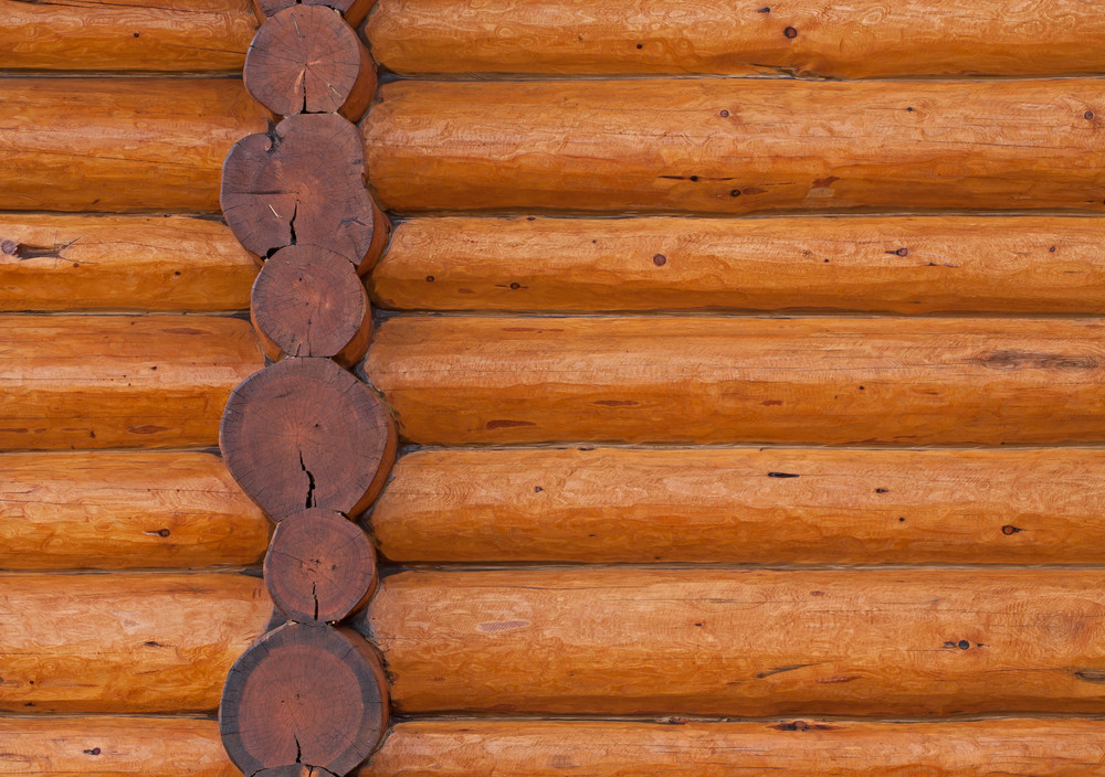 Wood Surface Texture 8