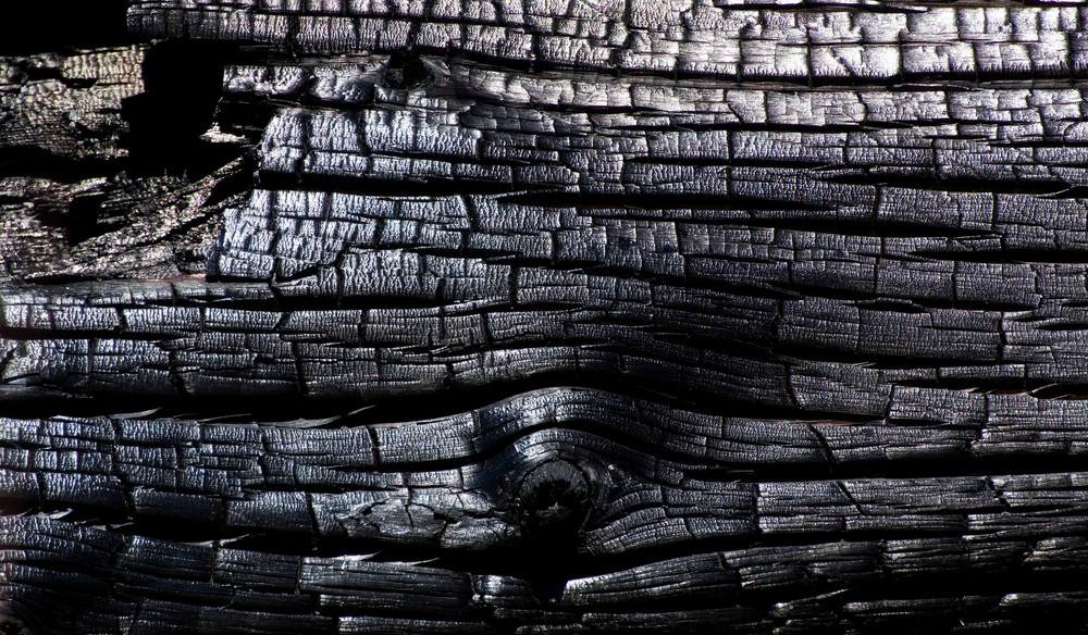 Wood Surface Texture 9