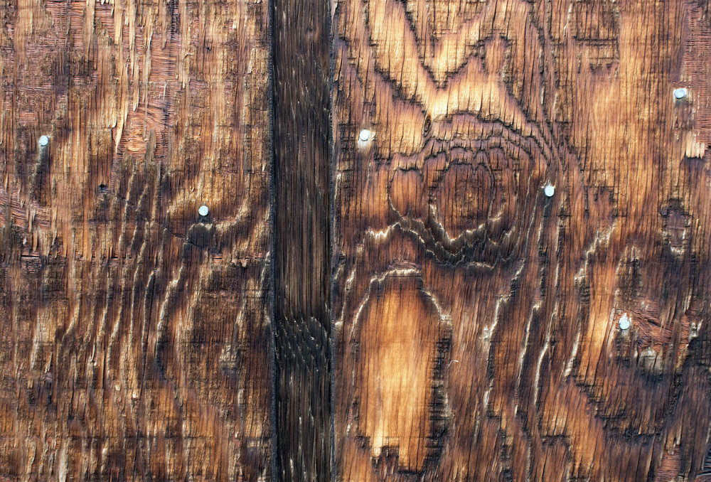 Wood Texture 14