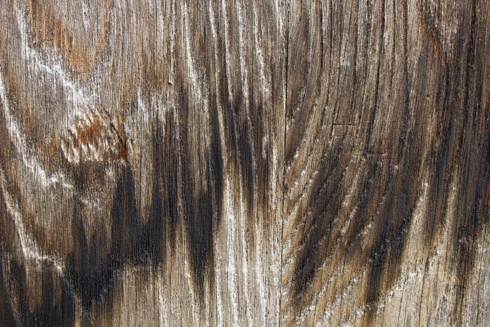 Wood Texture 44
