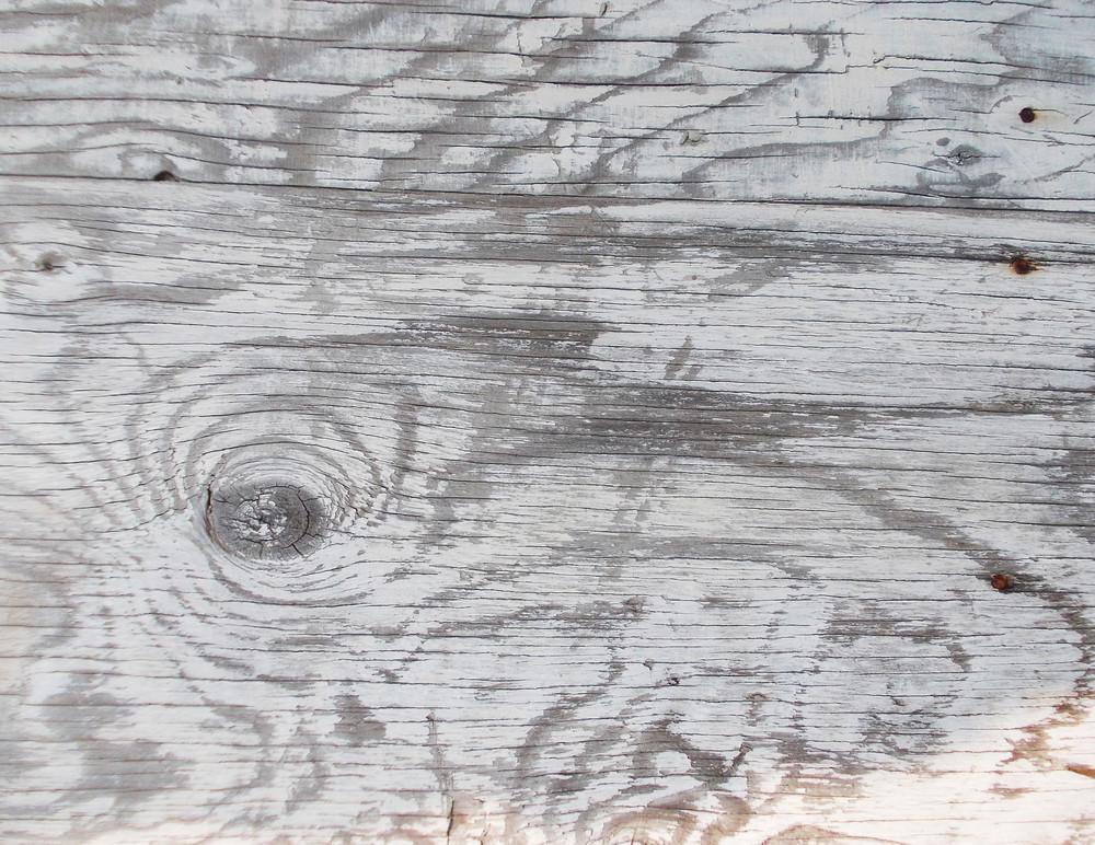 Wood Texture 81