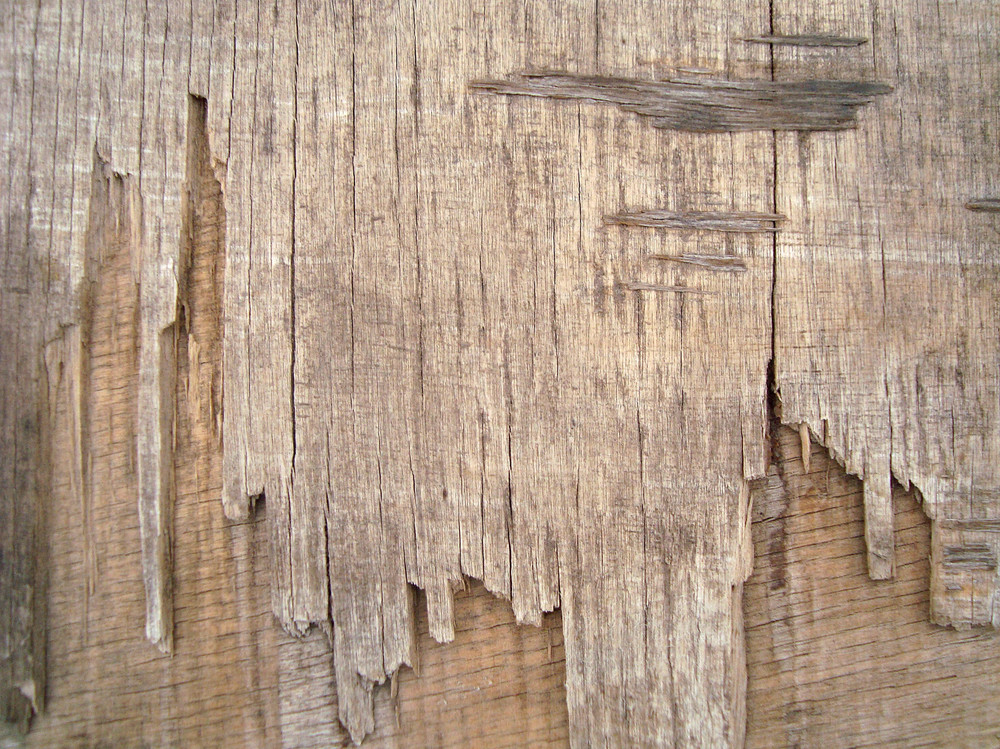 Wood_old_background