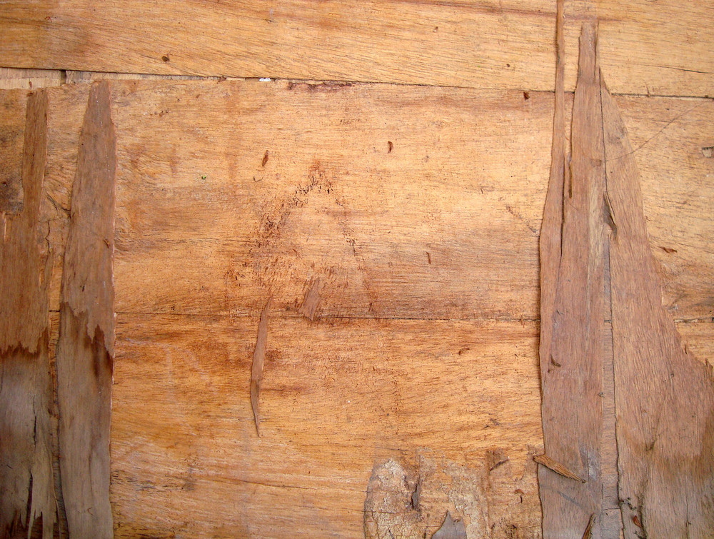 Wood_ply_texture