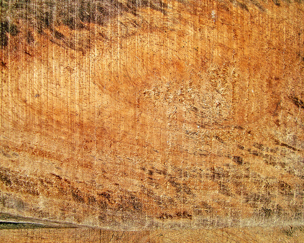 Wood_texture_surface