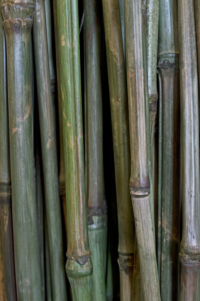 Wooden Texture 23