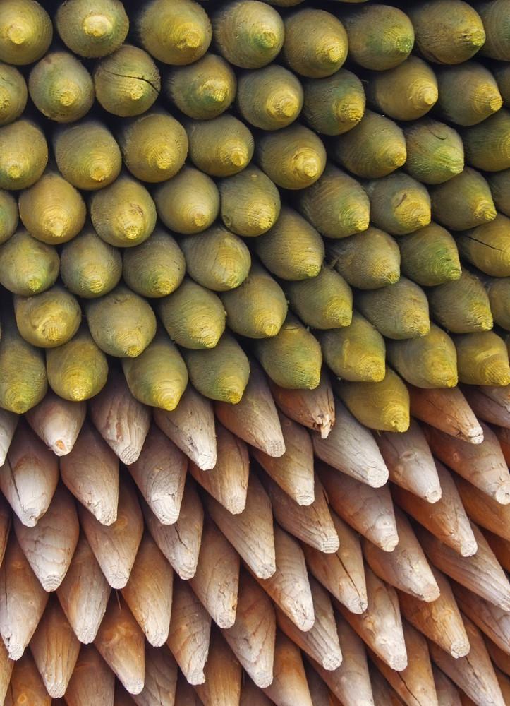 Wooden Texture 32