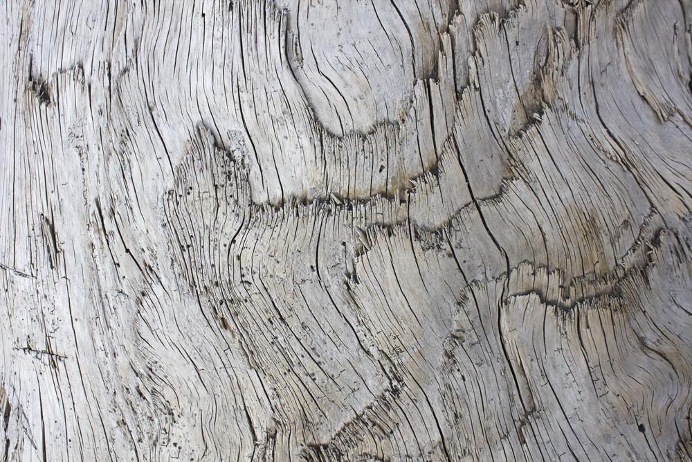 Wooden Texture 55