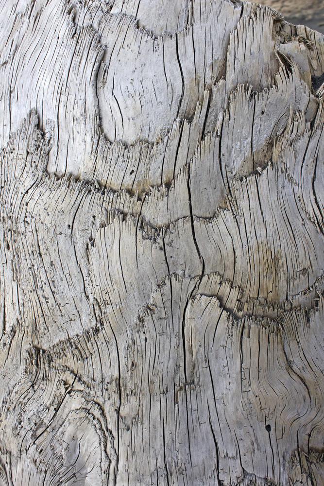 Wooden Texture 56