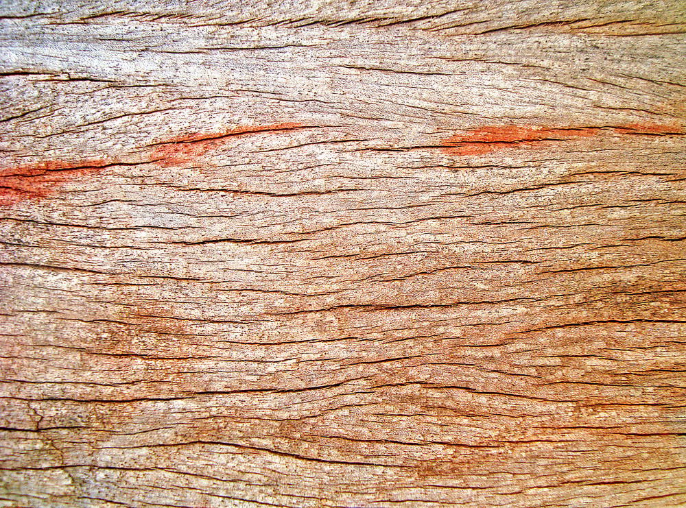 Wooden_backdrop