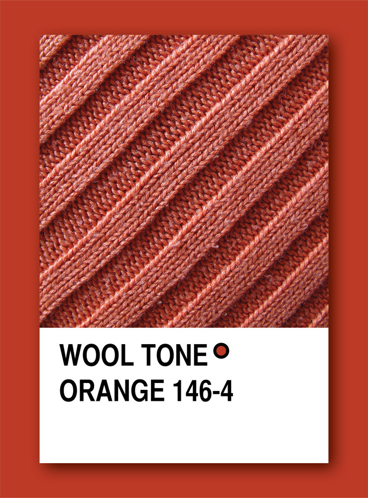 Wool Tone Orange. Color Sample Design