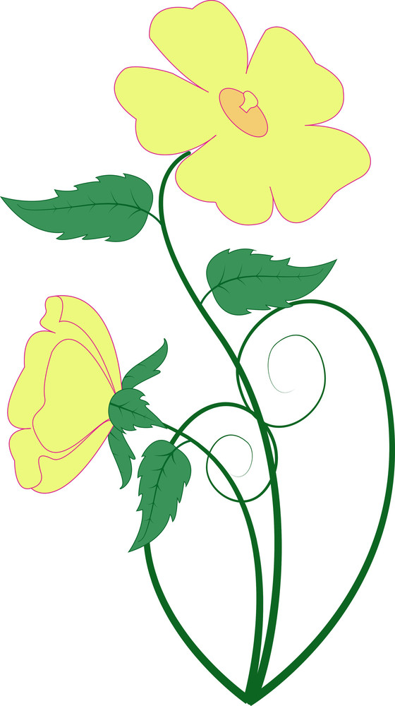 Yellow Blossom Vector