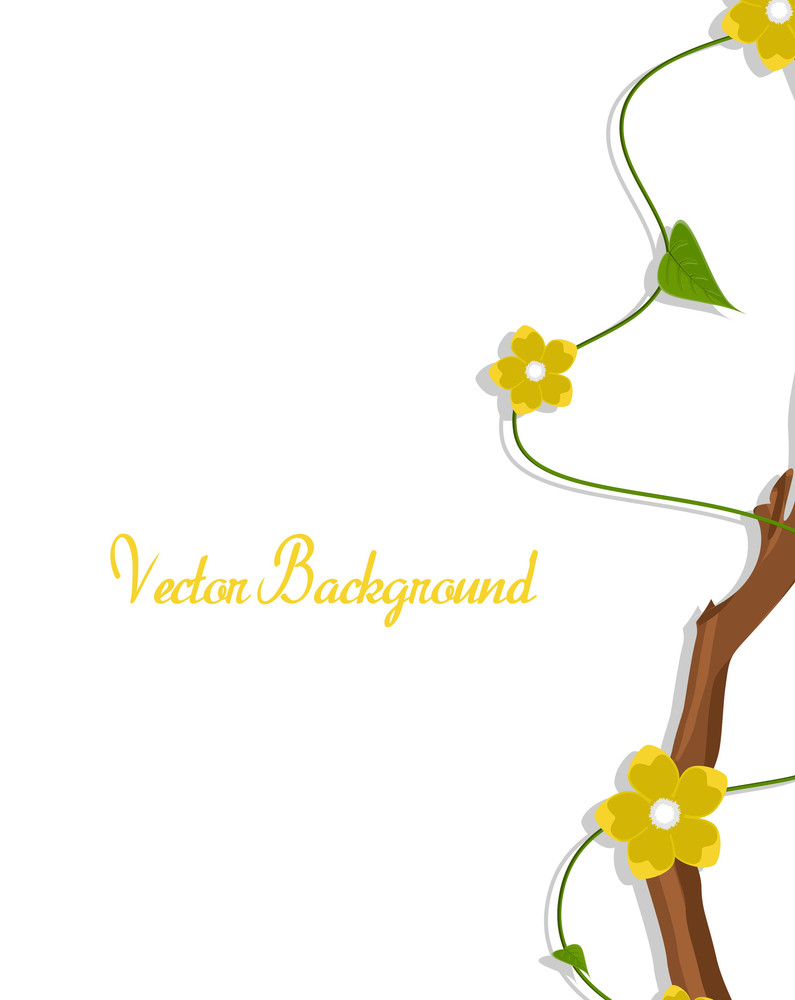 Yellow Daisies Branch Greeting Card