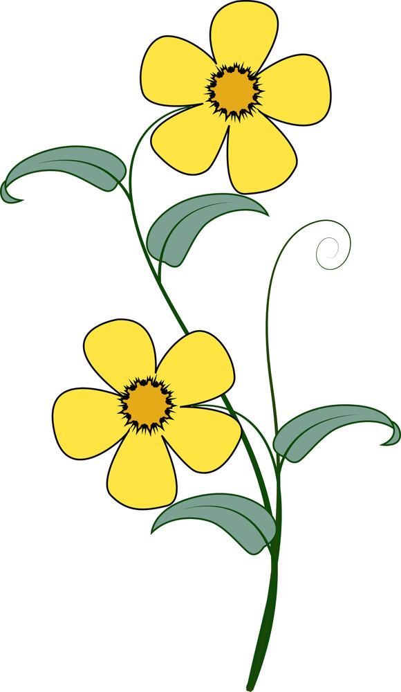 Yellow Flower Branch