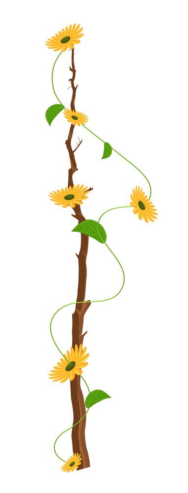 Yellow Flowers Branch Vector