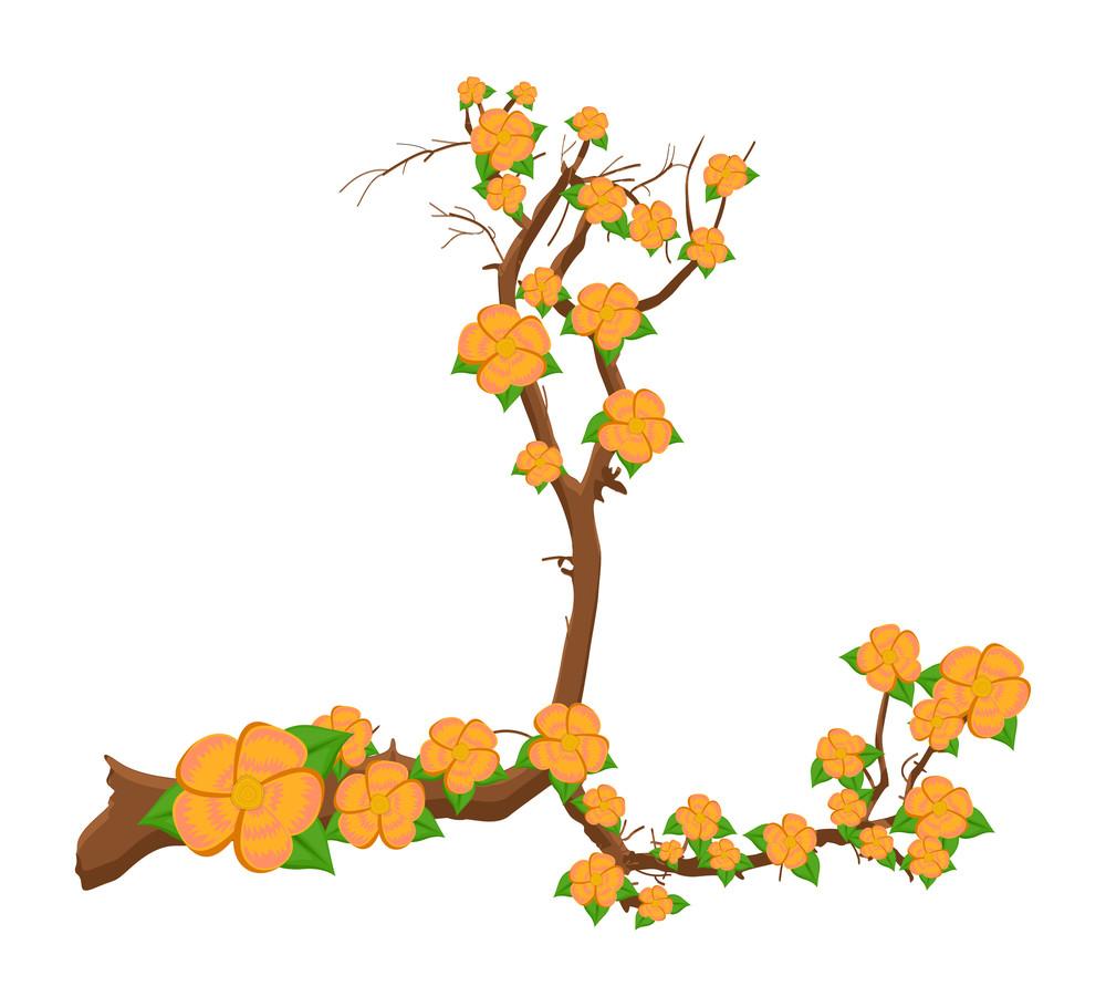 Yellow Flowers Branch