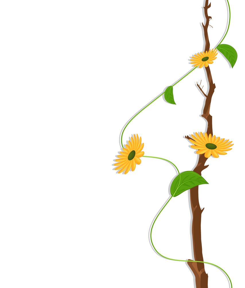 Yellow Flowers Vector Branch