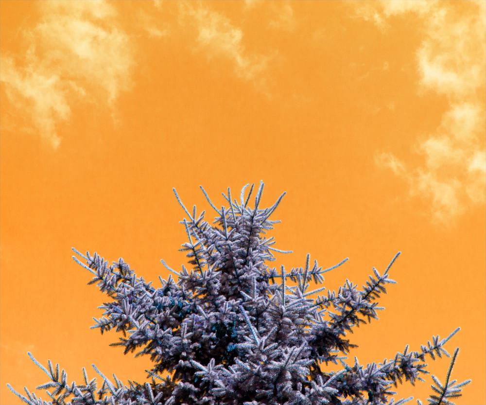 Yellow Sky Texture