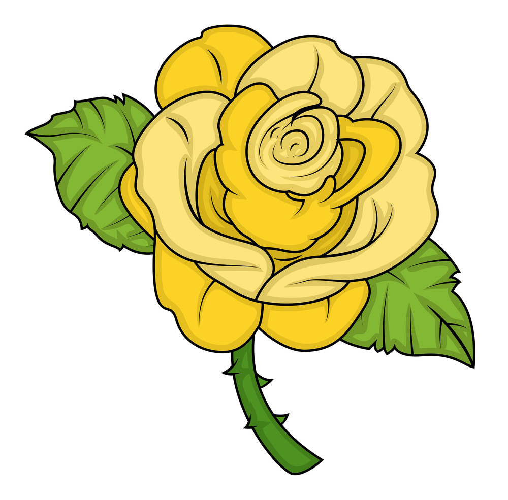 Yellow Vector Rose