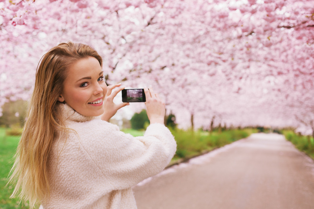 Young woman using her smartphone to capture images of the path and cherry blossoms tree at park, Young female looking over her shoulder while taking pictures with her mobile phone at spring blossom garden.