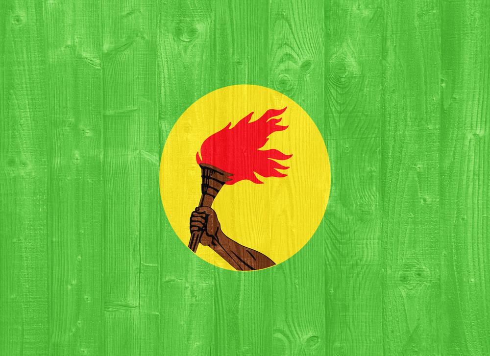 Zaire Flag