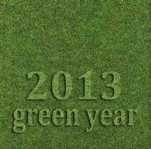 2013 Green Year