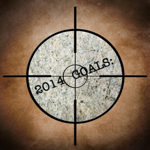 2014 Goals Target
