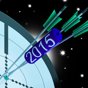 2015 Accurate Dart Target Shows Successful Future
