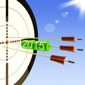 2015 Target Shows Business Plan Forecast