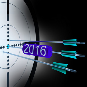 2016 Target Shows Successful Future Growth
