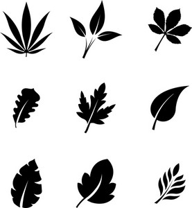 2d Leaf Silhouettes