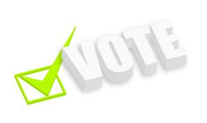 3d Vote