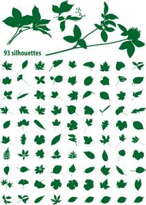 93 Leaf Silhouettes