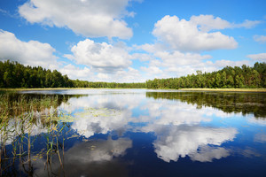 A Lake In Estonia In Beautiful Summer Day