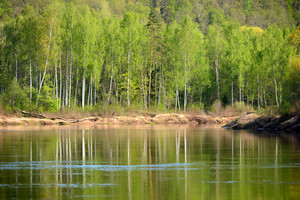 Gauja River In Spring Morning In Sigulda