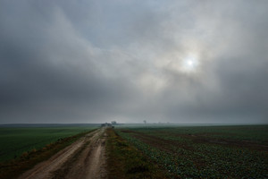 A Road In The Field In Overcast Day