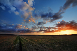 Sunset In Countryside