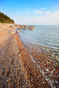 Baltic Sea Shore
