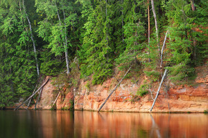 Sandstone Cliffs In Gauja National Park